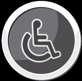 17 icone handicap